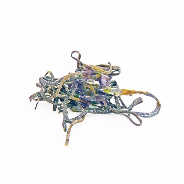 Bio Meeres-Spaghetti (Riementang)