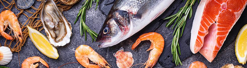 Kaltwasserfische und Meerespflanzen