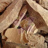 Cacao Paste