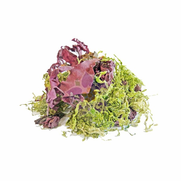 Mixed Seaweed for Salad (Mix of 5 seaweed leafs) 60g